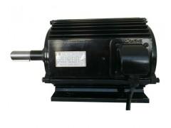 100L-10极负压风机电机