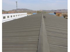 厂区屋顶防水防腐