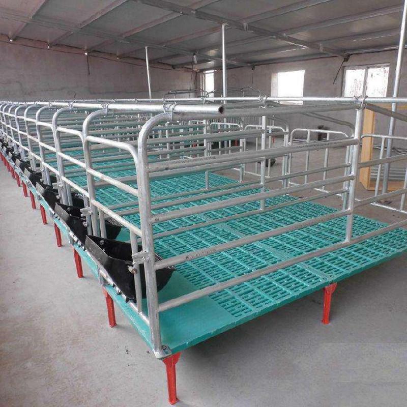 保育床 漏粪板母猪 猪用定位栏 铸铁腿 料线 母猪产床
