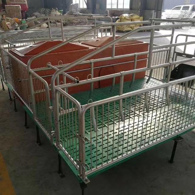 鑫尧畜牧欧式产床刮粪机母猪产床漏粪板保育床限位栏猪舍料线