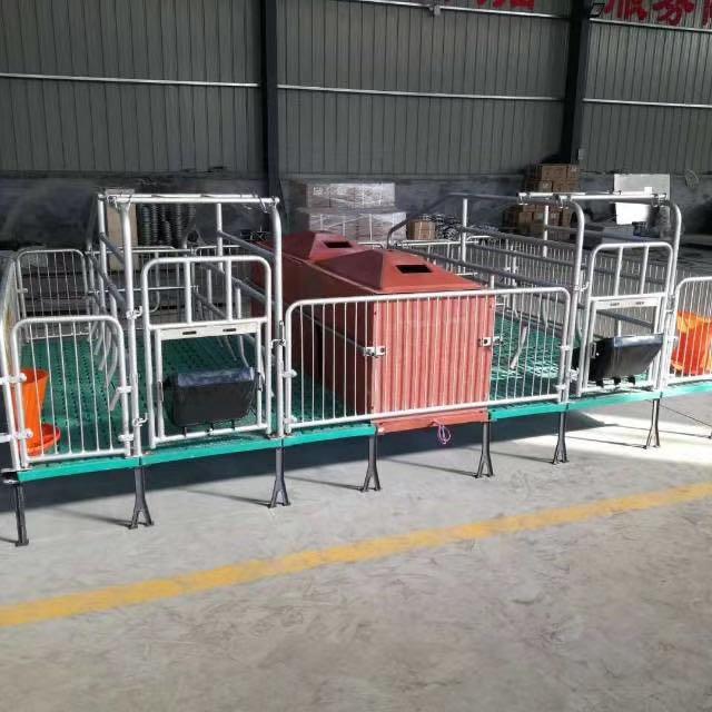 鑫尧畜牧养猪设备产床及锁扣漏粪板保育床限位栏猪舍料线