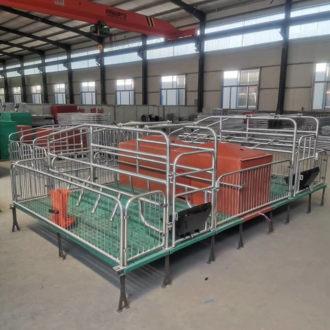鑫尧畜牧介绍母猪复合产床设备