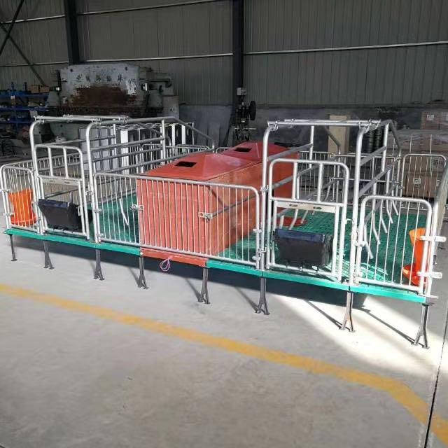 欧式产床刮粪机母猪产床漏粪板保育床限位栏猪舍料线