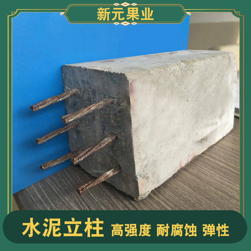 种植大棚水泥立柱