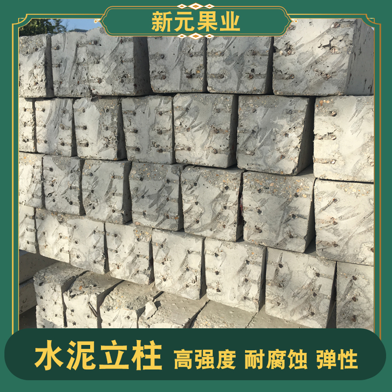 钢筋果园水泥立柱