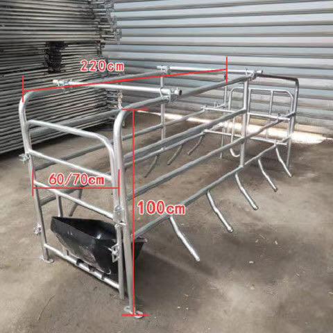 定位栏 铸铁腿 料线 运城市母猪产床 保育床 漏粪板母猪