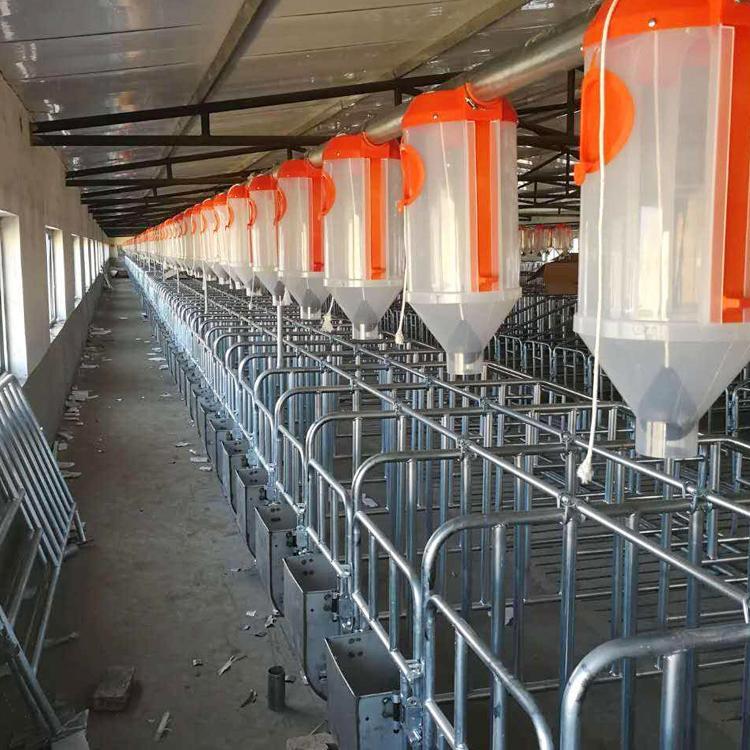 料线母猪产床呼和浩特市保育床漏粪板母猪定位栏铸铁腿