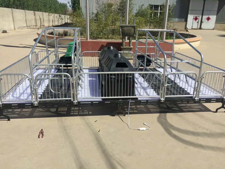 呼和浩特市料线母猪产床保育床漏粪板母猪定位栏铸铁腿