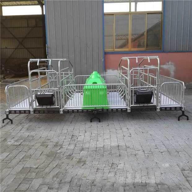 通辽市保育床 漏粪板母猪 定位栏 铸铁腿 料线 母猪产床