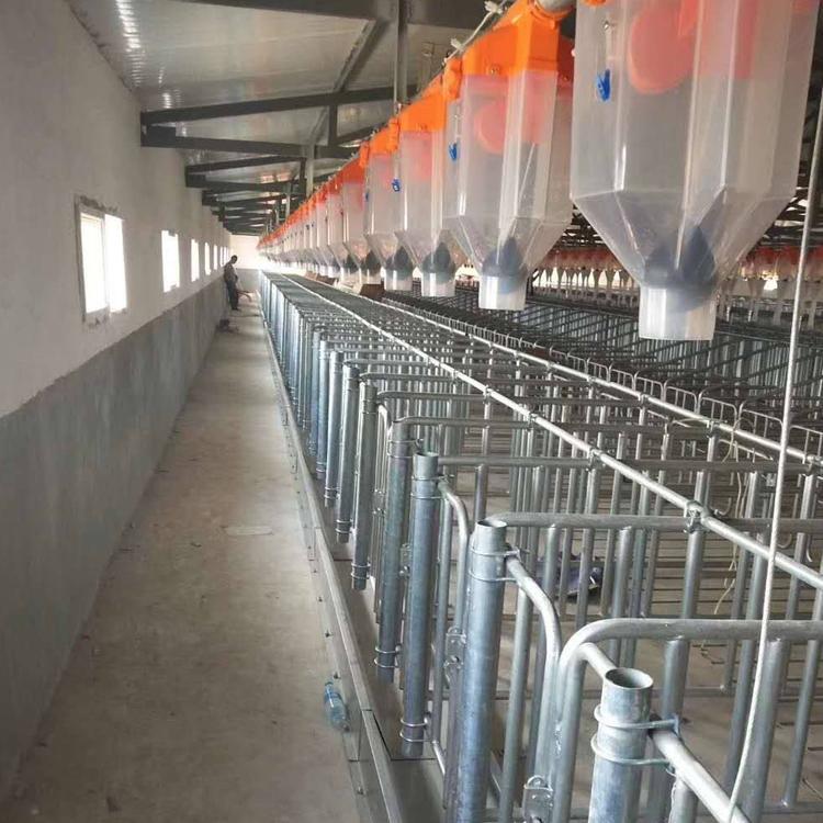 鑫尧畜牧料线母猪产床保育床漏粪板母猪定位栏铸铁腿